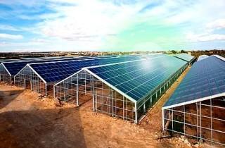 serra-fotovoltaica-6_1